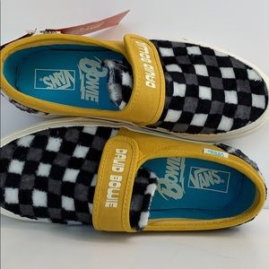 Shoes - NWT VANS HUNKY DORY